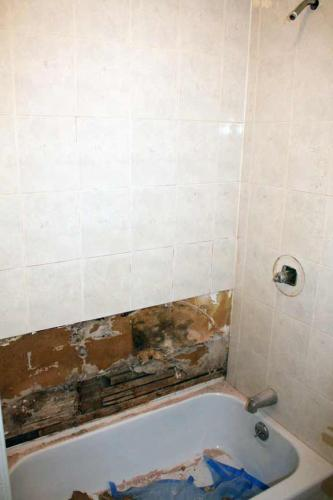 Upstairs/Downstairs Bathroom Repair